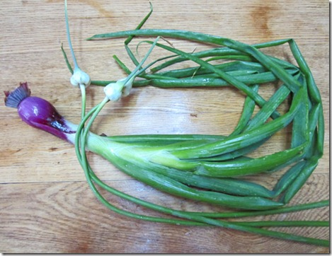 Red onion and garlic scapes