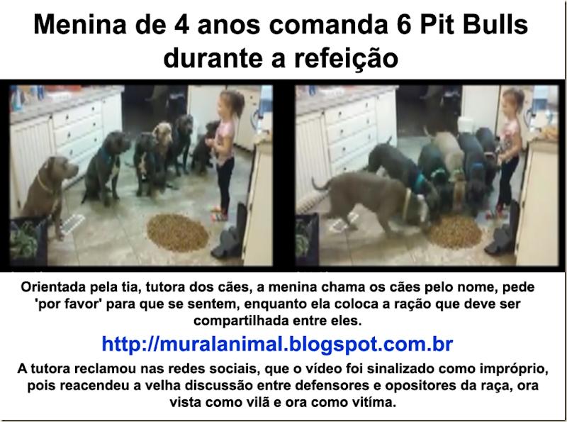 menina_6_pitbulls
