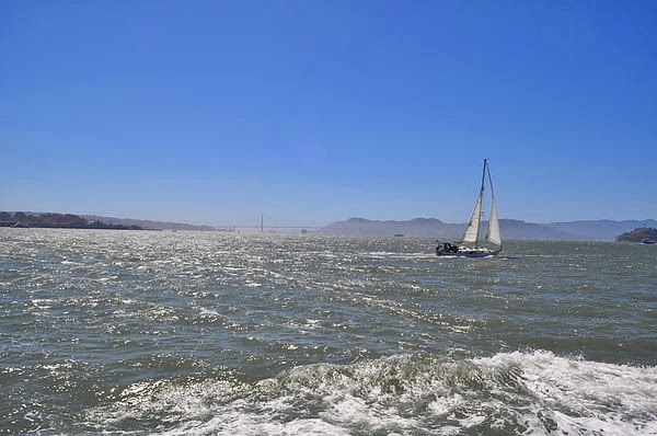 海上的帆船
