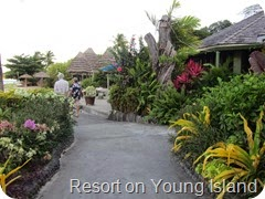 036 Resort, Young Island