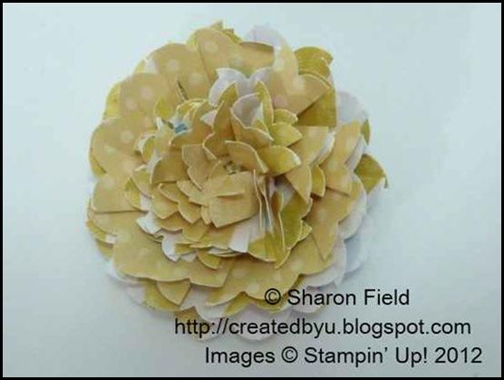 2.starburst_flower_variation_For_Super_Saturday