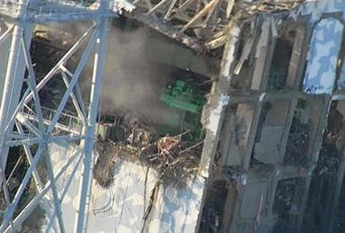 0607-Fukushima-nuclear-terror.JPG_full_380