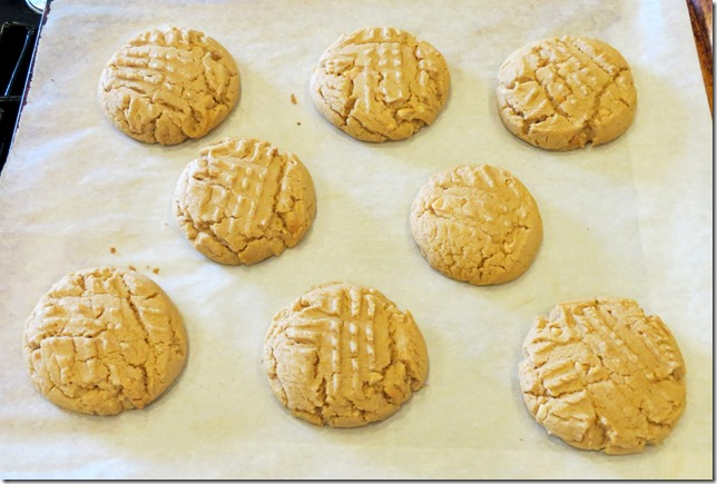 Criss Cross Peanut Butter Cookies 6-15-13