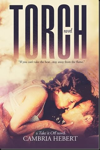 Torch Cover_thumb[1]