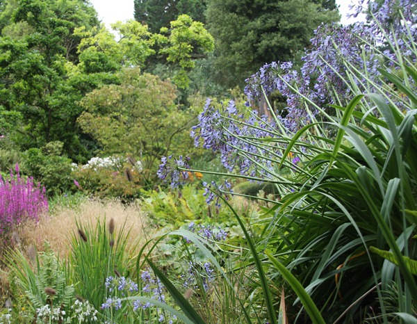 Hidcote garden (41)