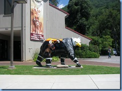 0441 North Carolina - US-441 - Cherokee Indian Reservation - bear statue