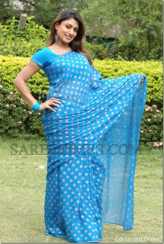 Malavika_Blue_Saree