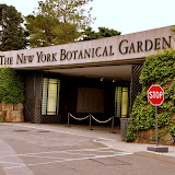 NY Botanical Garden - July '12