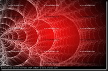 a-teia-da-aranha-desenho-sobre-um-fundo-vermelho_108381