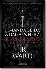 irmandade-guia-oficial-da-serie