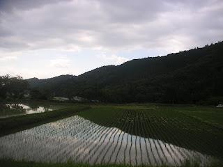 20120610-041.jpg