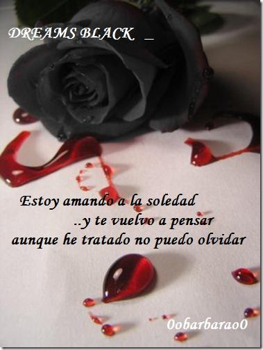 soledad (15)
