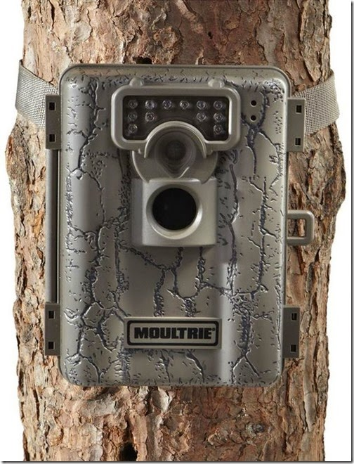 moultrie trailcam