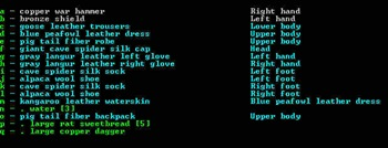 dwarf-fortress-adventurer_7