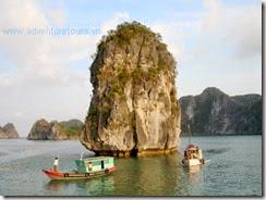 Catba_island_Haiphong_Vietnam (6)