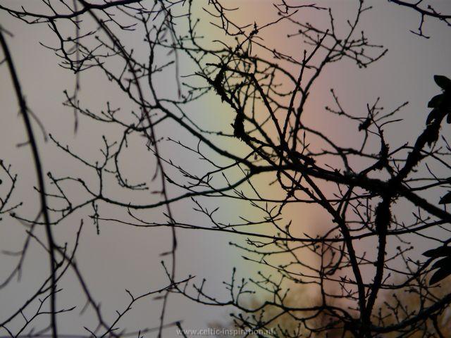 spirituele-reis-dartmoor-engeland-23.JPG