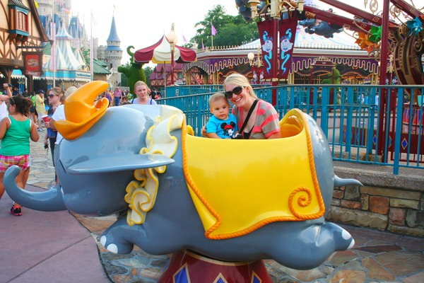 Magic Kingdom & Animal Kingdom 199