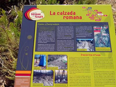 Ruta del bosque y el fuego Zuera Calzada romana
