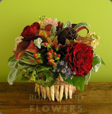 229820_529629617054406_473043458_n robin wood flowers