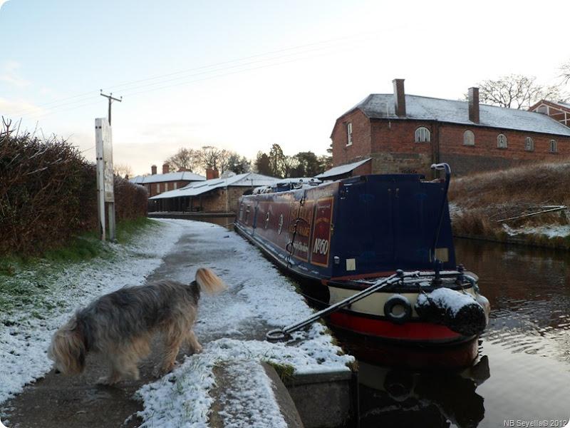SAM_0003 Snowy Ellesmere