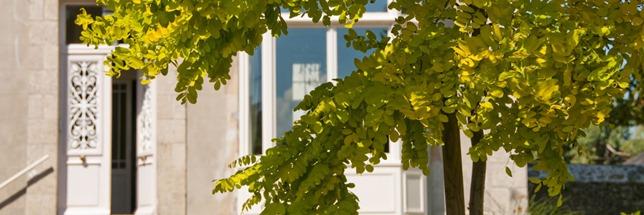 1-jardin-clos-parking-prive-villa-christilla-chambre-hote-charme-saint-malo-mont-michel-bretagne-france (1)