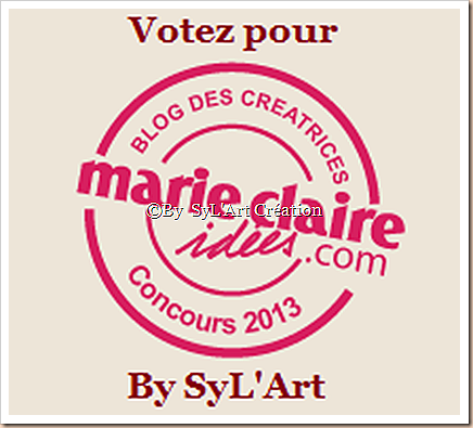 Concours blog MCI 2013