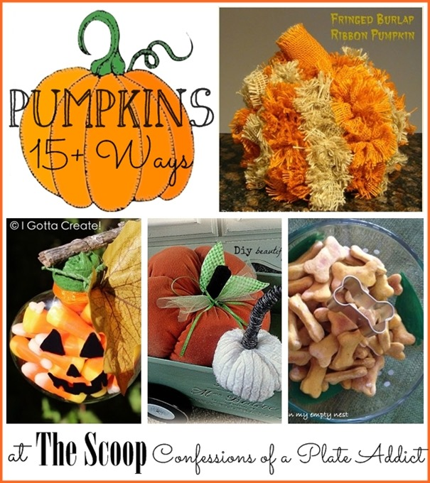 CONFESSIONS OF A PLATE ADDICT Pumpkins 15  Ways
