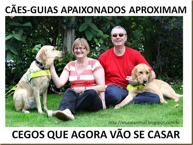 CÃES-GUIAS APAIXONADOS APROXIMAM
