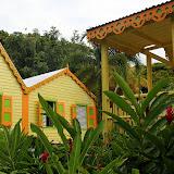 The Lush Gardens of Romney Manor - Basseterre, St. Kitts