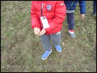 I bambini delle classi 1° della Scuola Primaria di Padulle piantano il grano! (8)