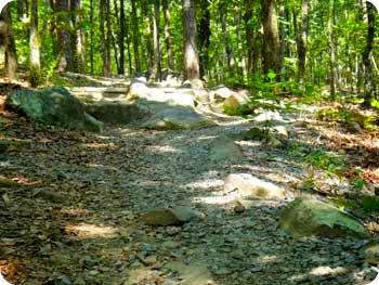 11-rocky-path