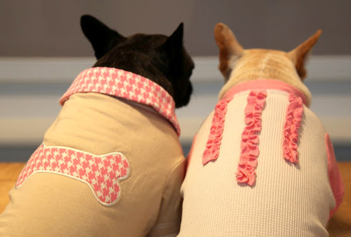 Yes, Franny, and I love the ruffle detail on the back of mine.  And the houndstooth print on your polo is lovely and so appropriate!