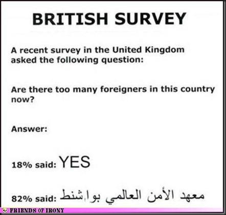 BritSurvey
