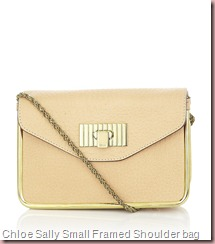 Chloe Sally Small Framed Shoulder bag