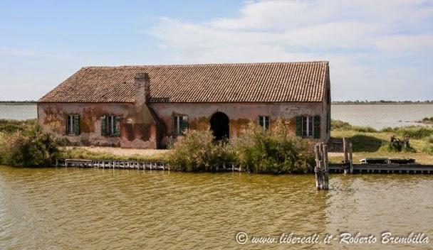 10_2014-05-21_Valli di Comacchio_Delta Po (66)