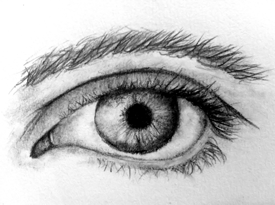eye study
