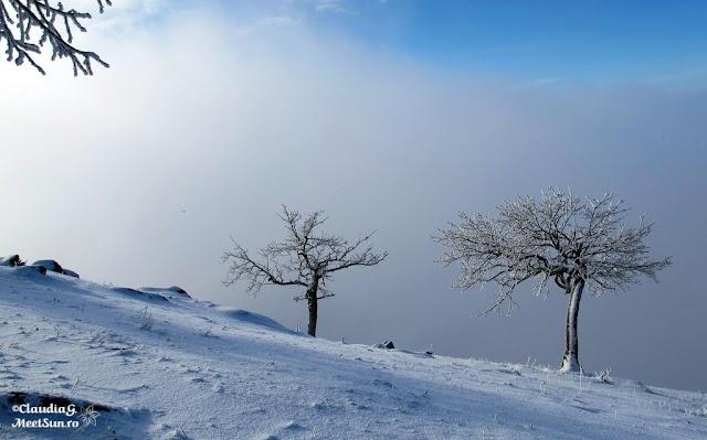 Macin-iarna-27_rw.jpg