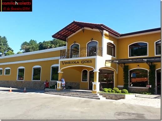 vinicola-goes-vindima-2014-vinho-e-delicias1