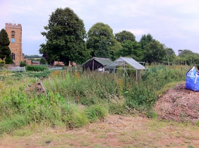 Allotment Wardinton UK 6
