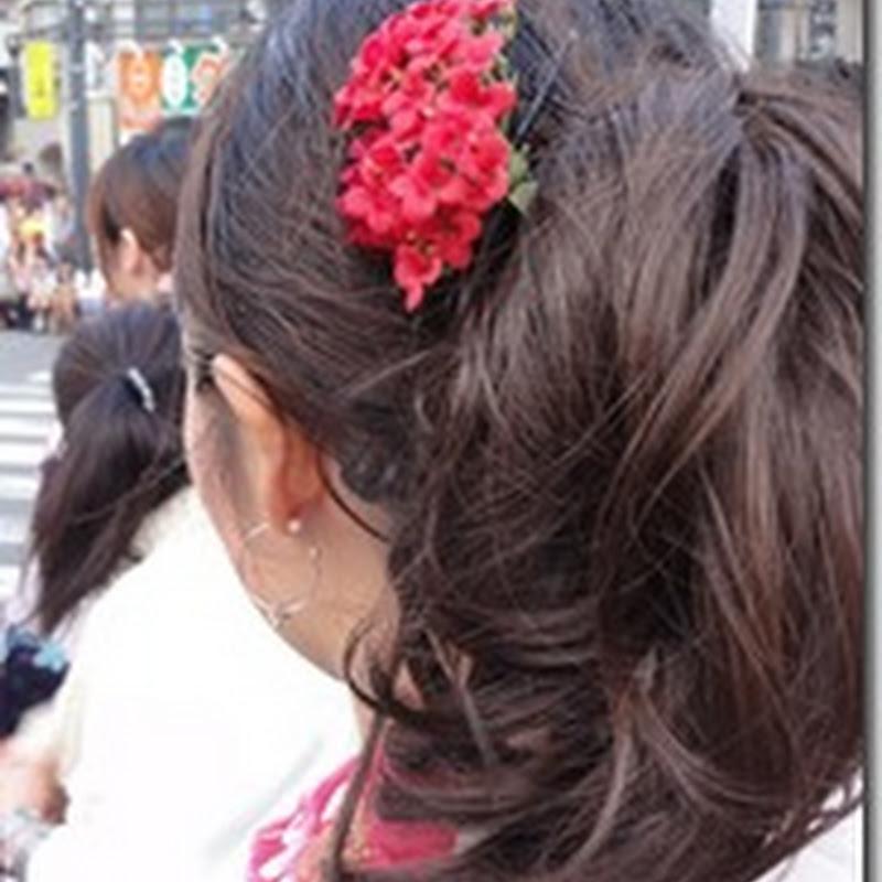 Nishi-Tokyo Omaturi 2013 - 西東京のお祭り