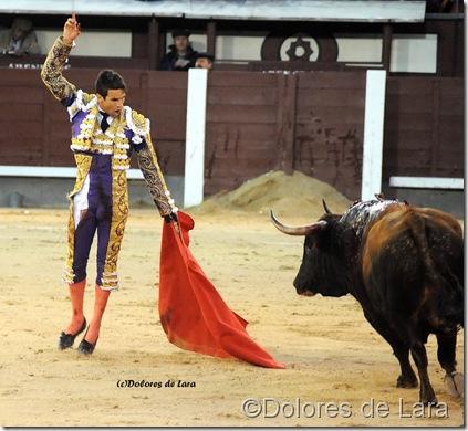 ©Dolores de Lara. JM Manzanares, 18-V-11 en Las Ventas