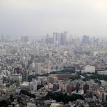 view of shinjuku in Tokyo, Tokyo, Japan