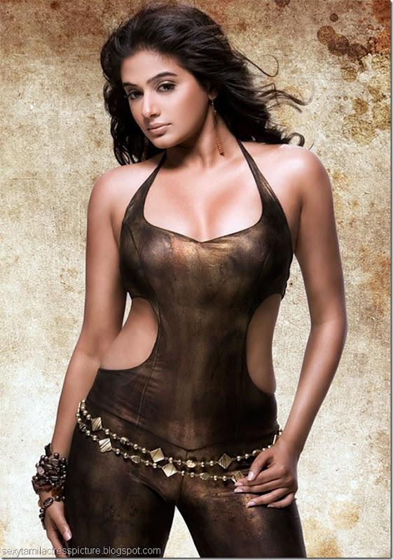 Priyamani Hot Photo Shoot Stills