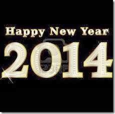 2014 año nuevo (8)
