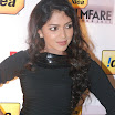Amala Paul @ 59th Filmfare Awards Press Conference Stills 2012