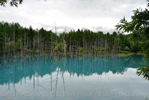 Lagoa Azul - Biei - Hokkaido - Glória Ishizaka - 24