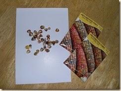 pastel cornmeal