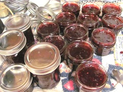 Blackberry jam 1.14.13  jam in jars