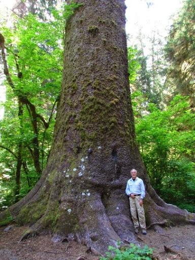 VisitingHohRainForest-46-2014-05-21-20-45.jpg