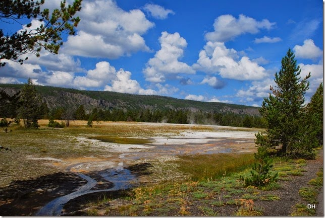 08-08-14 B Yellowstone NP (212)